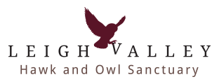 Leigh Valley Hawk and Owl Sanctuary